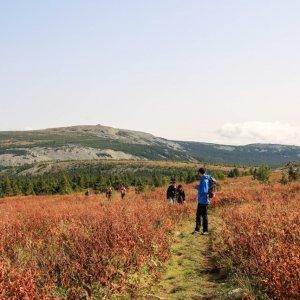 Пеший однодневный поход на Южный Урал
