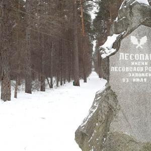 Беговой поход в парке Лесоводов России